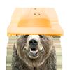 帽子付きクマ