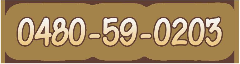 0480-59-0203
